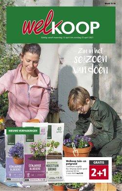 Bouwmarkt & Tuin Aanbiedingen in de Welkoop folder in Amsterdam ( Nog 8 dagen )