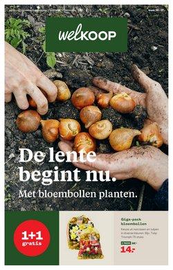 Aanbiedingen van Bouwmarkt & Tuin in the Welkoop folder ( Nog 3 dagen)