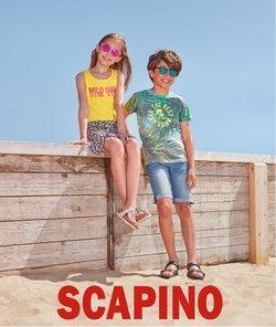 Catalogus van Scapino ( Meer dan een maand)