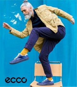 Aanbiedingen van ECCO in the ECCO folder ( Meer dan een maand)