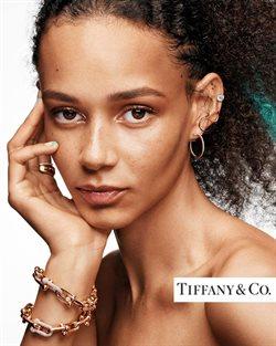 Catalogus van Tiffany & Co. ( Meer dan een maand )